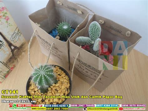 souvenir kaktus mini tanaman hias unik cantik paper