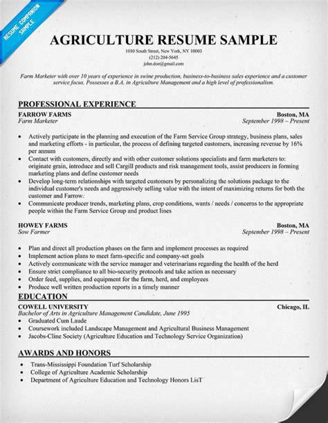 resume builder for nurses worksheet printables site