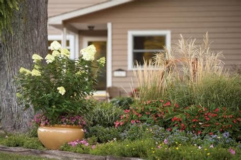 flower beds for beginners front yard flower bed ideas for beginners hgtv