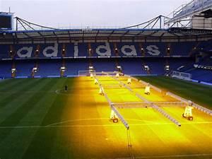 Chelsea Stadium Free Stock Photo