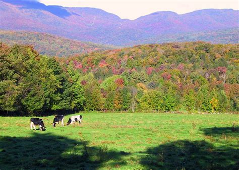 Fall Hiking Green Mountain Nf Vermont  Sierra Club Outings