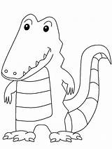 Crocodile Coloring Pages Animals Animal Florida sketch template