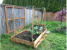 Raised Garden Bed Bird Netting Garden Inspiration