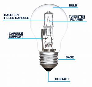 Headlight Bulb Diagram