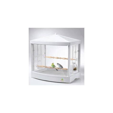 gabbia per cocorite gabbia in acrilico treetop per pappagallini