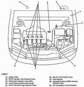 Chevy Prizm Engine Diagram  U2022 Downloaddescargar Com