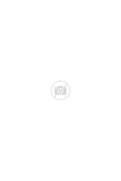 Talbots Floral Scoop Neck Pleated Sleeveless Short