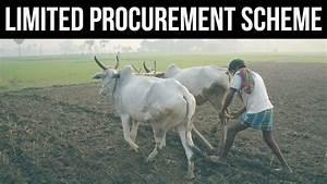 Limited Procurement Scheme, Farm distress caused by Demand ...
