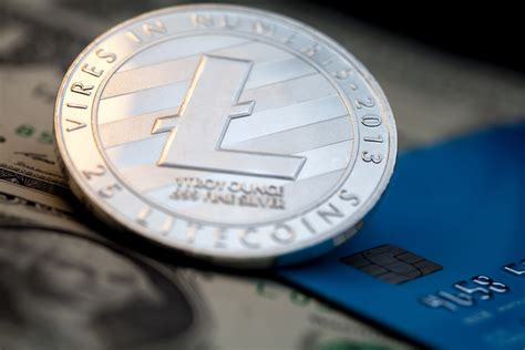 google search  litecoin hits  month high  months