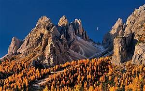 Nature, Landscape, Moon, Blue, Sky, Mountain, Forest, Fall