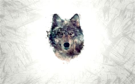 Wolf Wallpaper For Iphone 11 by Wolf Minimalism Hd Wallpaper Best Wallpapers Hd Gallery