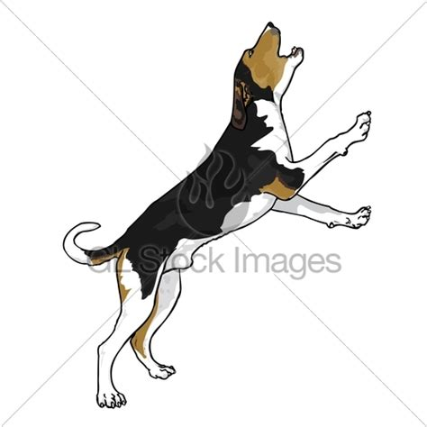 coonhound treeing walker clipart tree vector clipground graphic cloud license standard