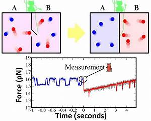 Single molecule research: When biology meets physics ...