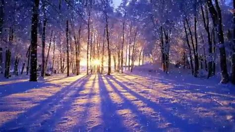 Animated Winter Wallpaper - winter sunset animated desktop wallpaper dreamscapes