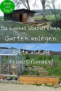 Rasen Umgraben Beet Anlegen : verwildeter garten so f ngst du an garten ~ Watch28wear.com Haus und Dekorationen