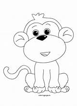 Monkey Coloring Sheet Animal Sheets Coloringpage Animals Monkeys นท sketch template