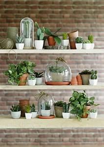Acheter Des Plantes : o acheter des fleurs et plantes artificielles mur brique truffaut et plantes ~ Melissatoandfro.com Idées de Décoration