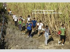Barbados Photo Gallery Colin Hudson Great Train Hike 2010