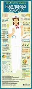 The Chart Shows The Percentage Of And Female Teachers Infographic Nursing By The Numbers Nurseslabs