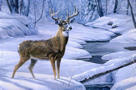 laura mark finberg november snow painting deer animal