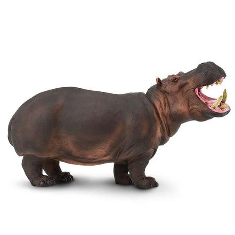 Hippopotamus Toy | Safari Ltd®