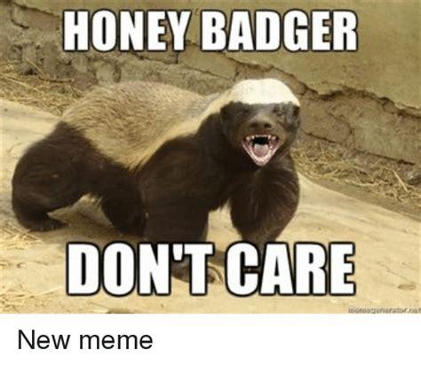 Badger Memes - funny honey memes of 2017 on sizzle corner