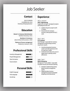 Simple Yet Elegant Cv Template To Get The Job Done