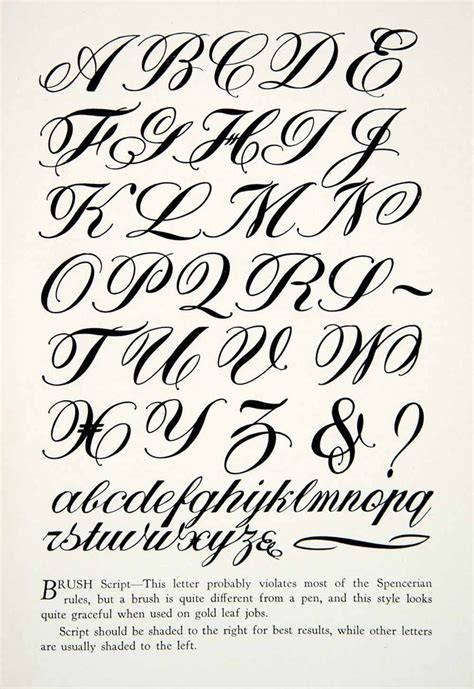 calligraphy calligraphy alphabet lettering guide calligraphy