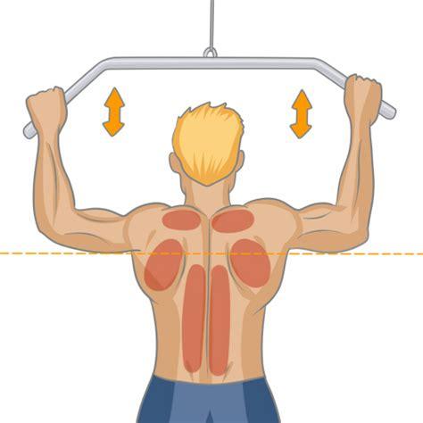 Se Muscler En Salle De Sport by Bien Muscler Ses Dorsaux Musculation