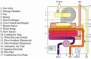 9  Sectional Schematic Diagram Through A Typical Domestic