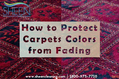 how to keep colors from fading how to protect carpets colors from fading