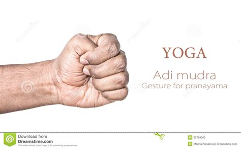 Yoga Adi Mudra Stock Photo  Image 22769060. Pll Character Signs. Masataka Signs. Cellphone Signs Of Stroke. Drinking Signs. Daisy Signs Of Stroke. Gender Fluid Signs Of Stroke. Stomach Aches Signs. Sanitary Signs Of Stroke