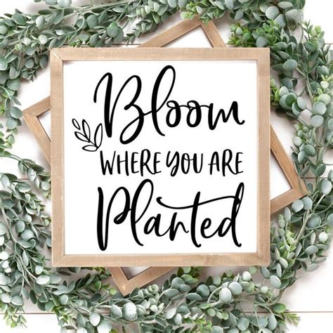 Share this post with others. Bloom Where You are Planted Svg Png Dxf Files for ...