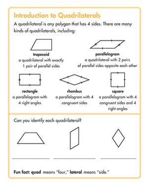 quadrilateral worksheets for 3rd grade types of quadrilaterals worksheet education