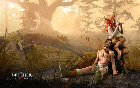 Star Wars Cute Wallpaper The Witcher 3 Wild Hunt The Succubus Wallpapers Hd Wallpapers Id 16450