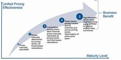 Gartner Pricing Optimization Retail Strategies Market Maturity