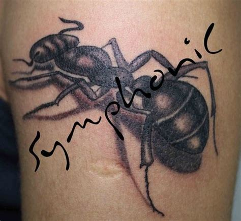 Ant  Tattoo Picture At Checkoutmyinkcom