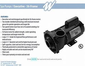 Waterway Executive 56 Frame Spa Pumps