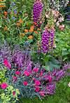485 best images about garden inspiration on Pinterest purple and orange flower garden