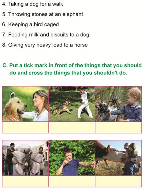 grade  science lesson   care  animals primary