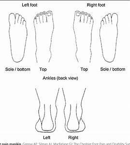 Diagram Of Foot