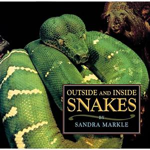 Outside And Inside Snakes