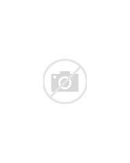Peony and Hydrangea Flower Centerpieces