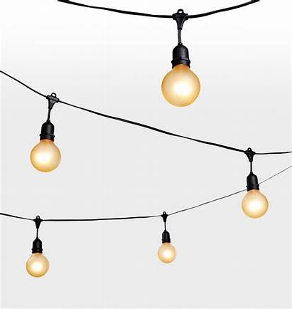 String Lights Gold Bulb Clipground Site