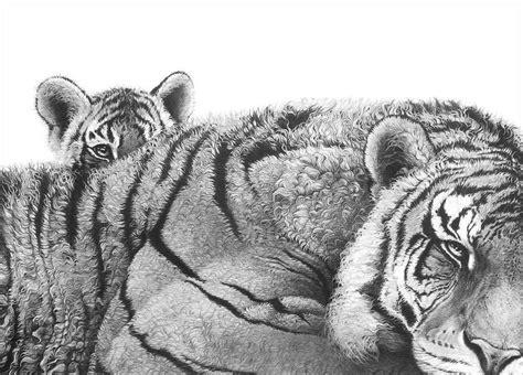 gary hodges images  pinterest wildlife art
