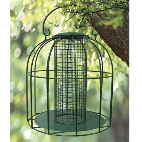 wire squirrel proof bird feeder cage attract wild seed