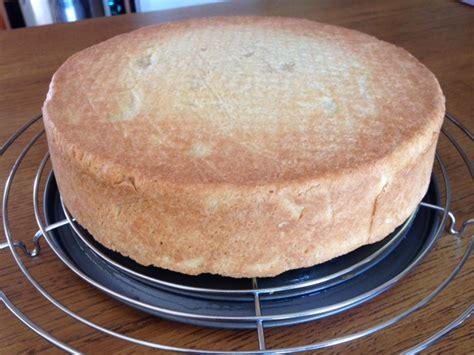 tarte au fromage sans pate tarte au fromage blanc regalezvous