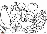Coloring Pages Challah Jewish Shabbos Hebrew Salad Fruit Books Crumbs Torah Tots Sheets Printable Crafts Children Archives Colors Purple Fun sketch template