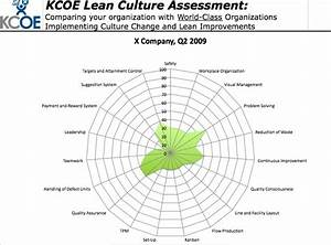 Lean Culture Assessment The Spider Diagram