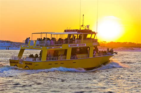 Glass Bottom Boat Tours Destin Fl by Dolphin And Destin History Cruise Tripshock